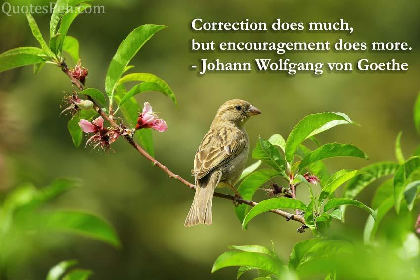 correction-quote