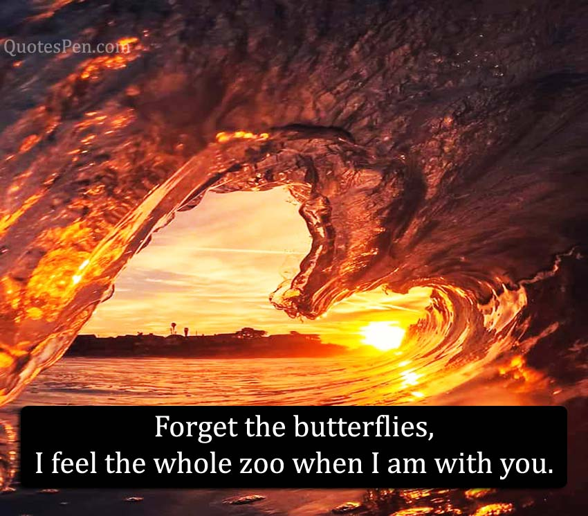 forget-the-butterflies