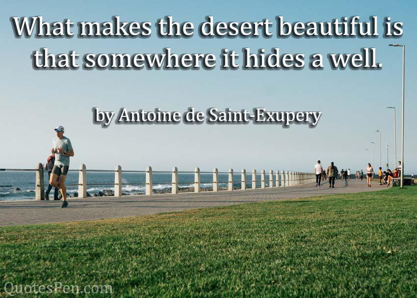 makes-the-desert-beautiful