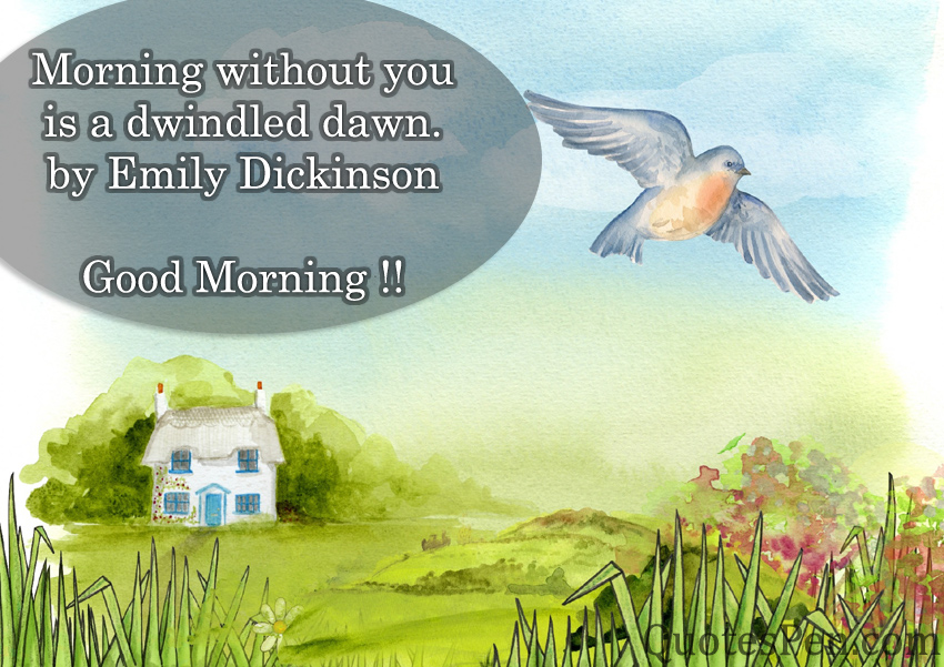 morning-without-you-quote