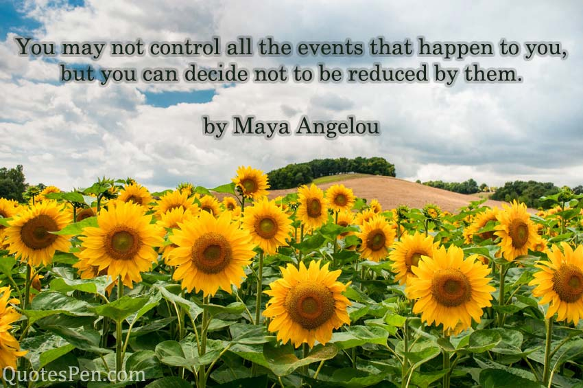 you-may-not-control-quote