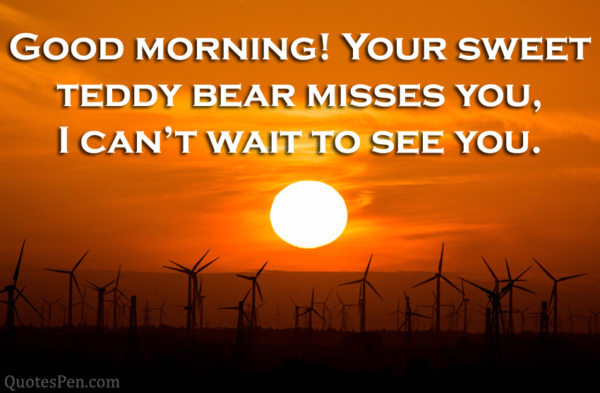 your-sweet-teddy-bear-morning
