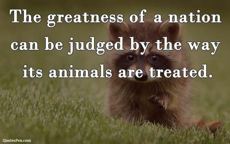 mahatma-gandhi-ji-quotes-on-animals