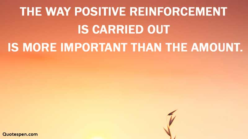 positive-reinforcement