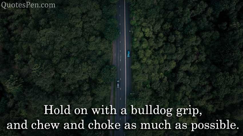 hold-bulldog