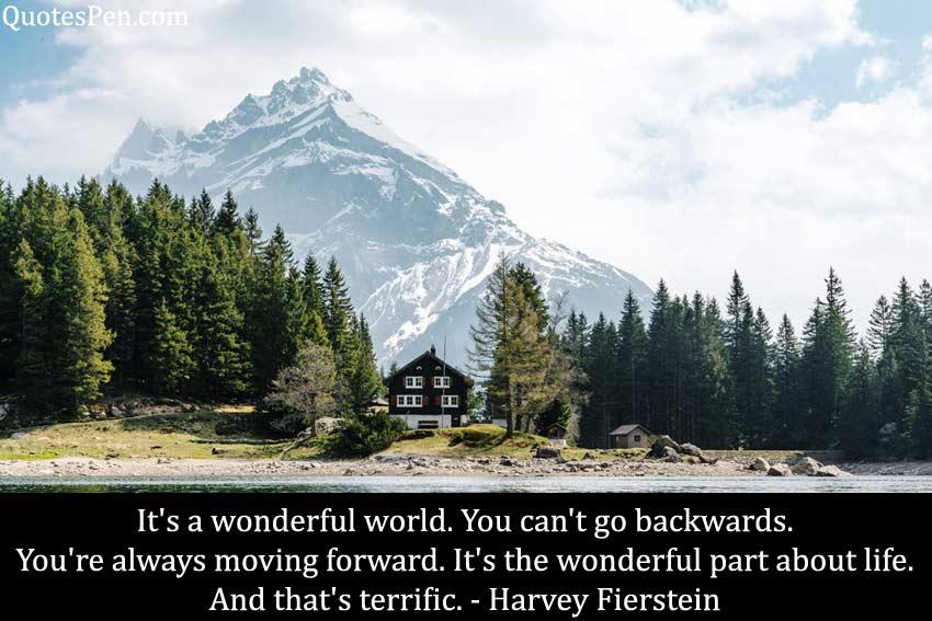 it-wonderful-world