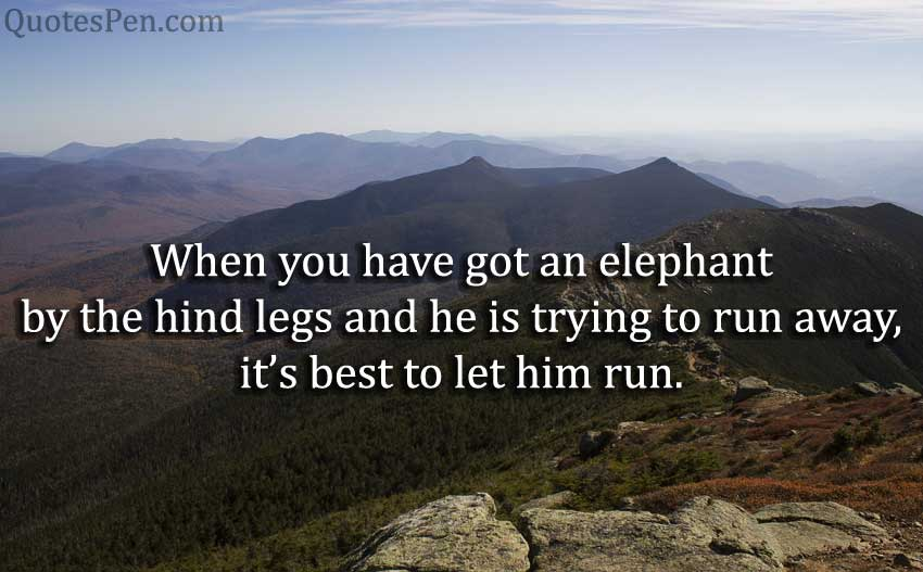 when-elephant