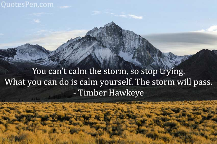 you-cant-calm-storm