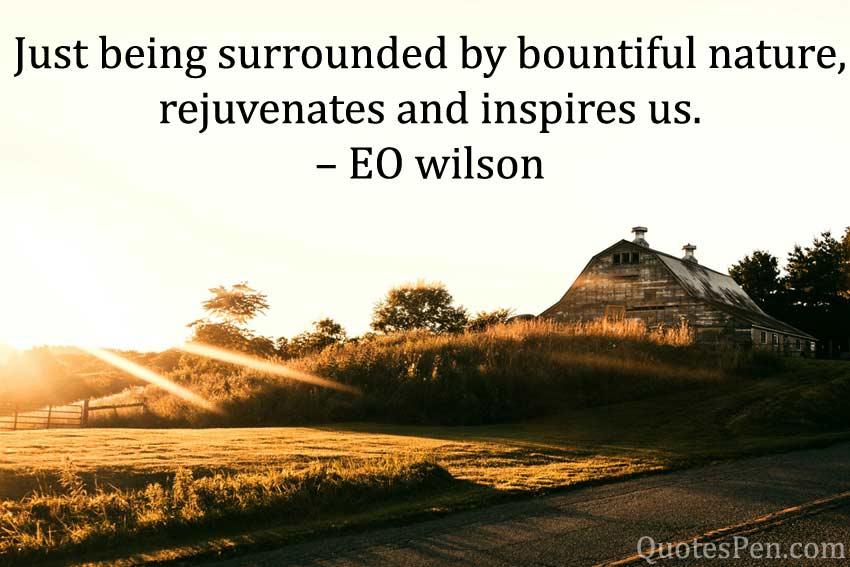 bountiful-nature-Good Morning Nature Quotes