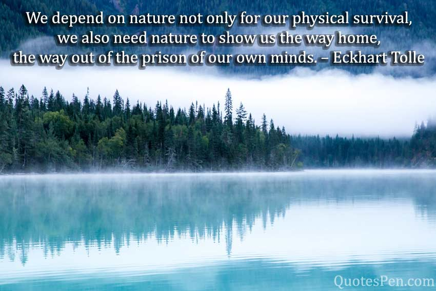 depend-on-nature-quote
