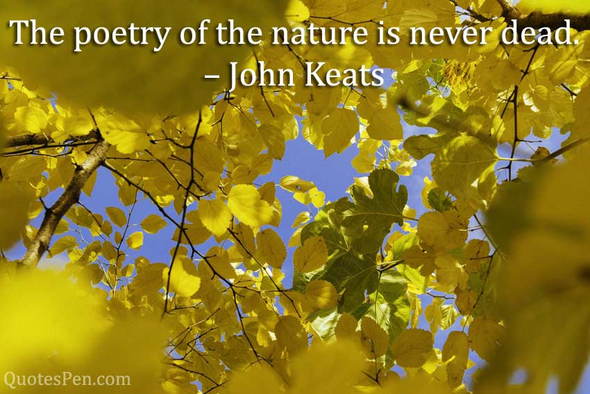 poetry-nature