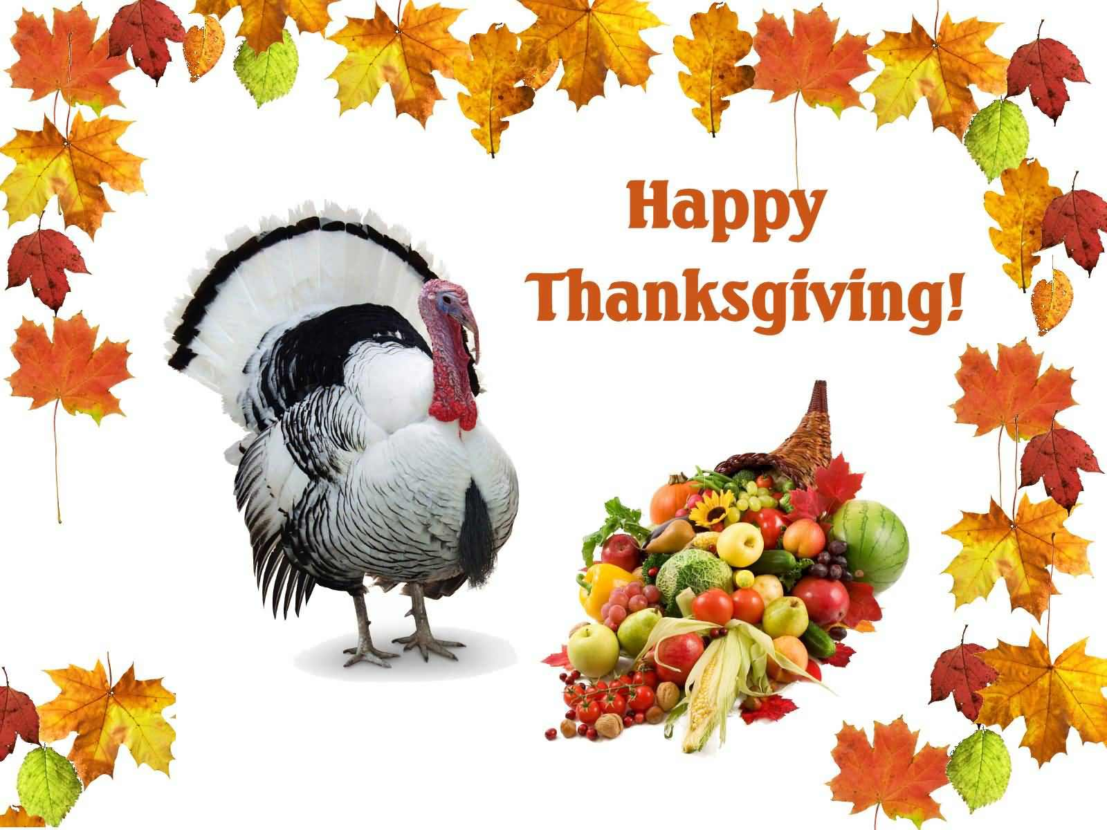 happy-thanksgiving-day-picture