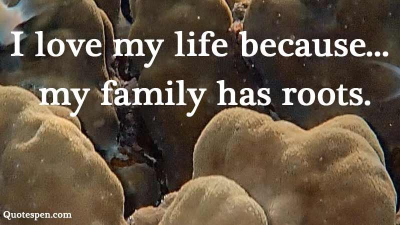 love-my-life-quote