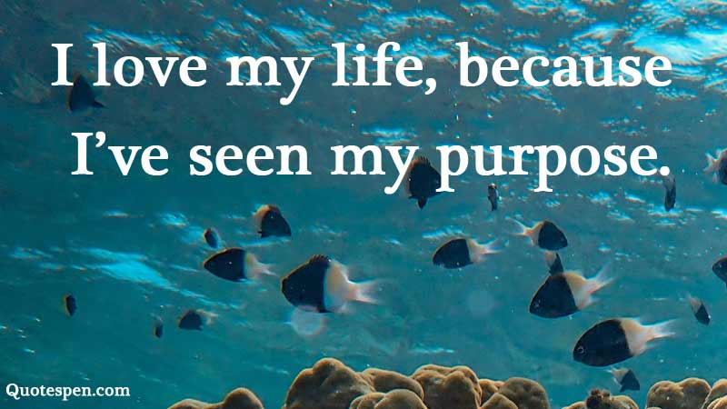 seen-my-purpose.