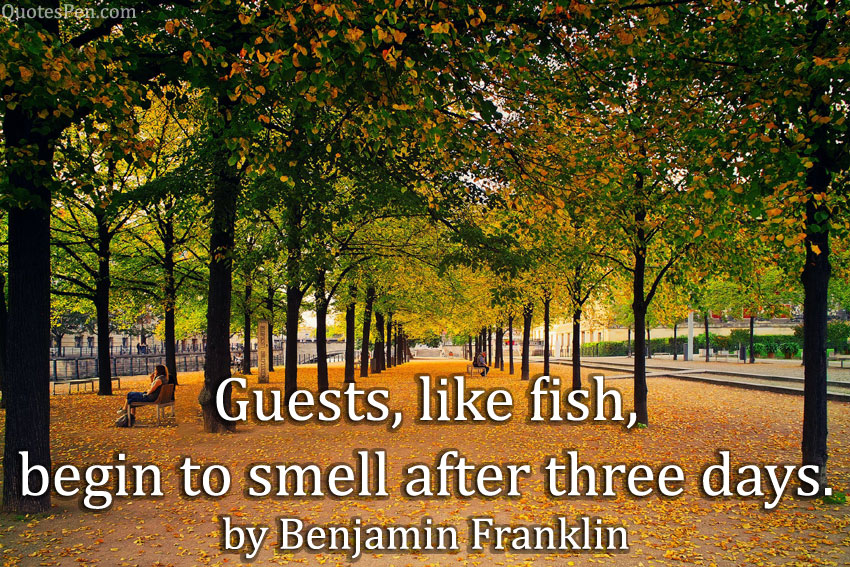 guests-like-fish-quote