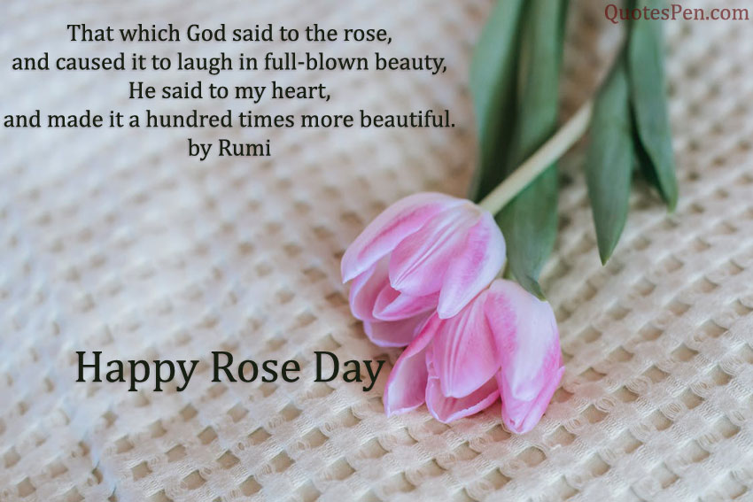 happy-rose-day-quote