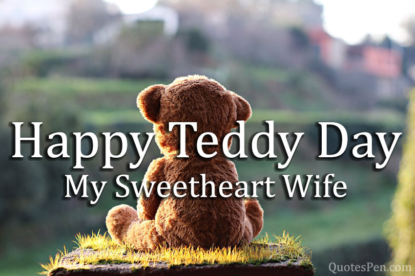 happy-teddy-for-wife-image