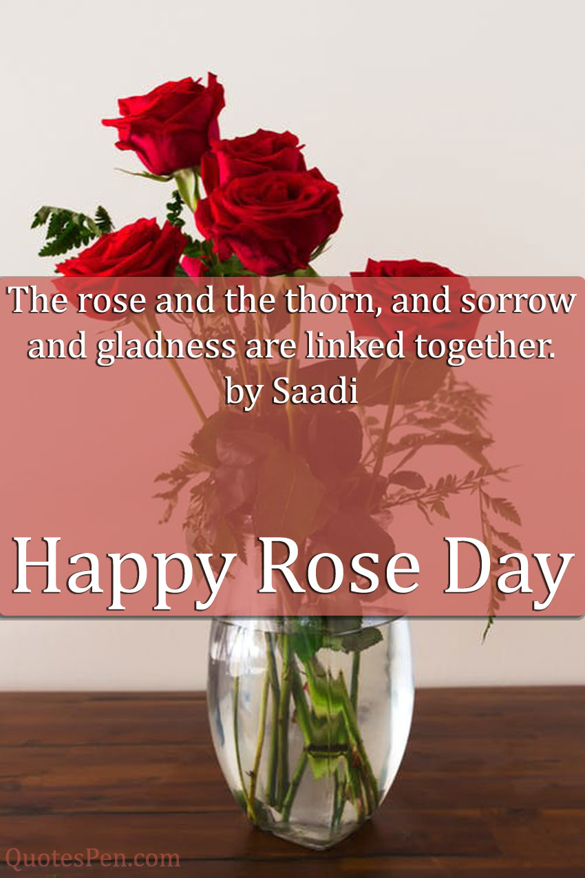 rose-and-the-thorn-quote