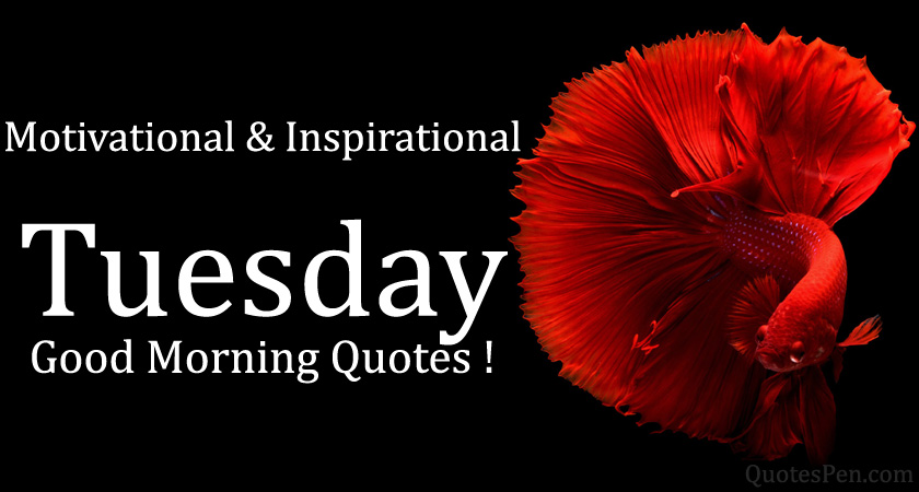 tuesday-quotes