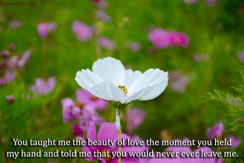 beauty-of-love-quote