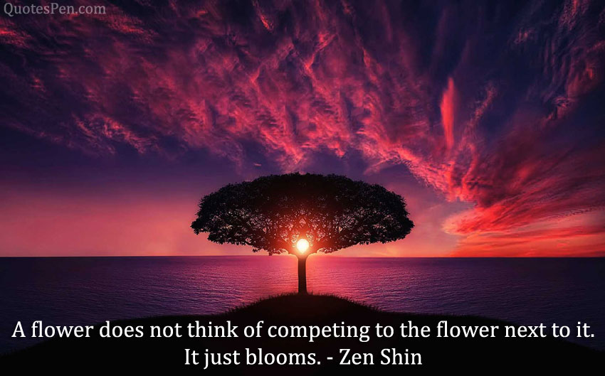 it-just-blooms-quote