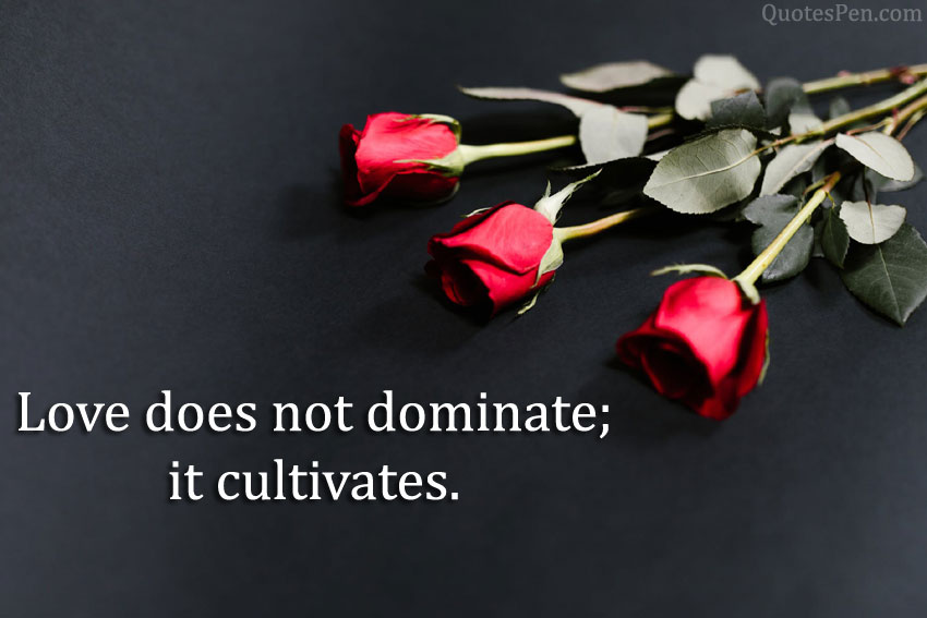 love-does-not-dominate