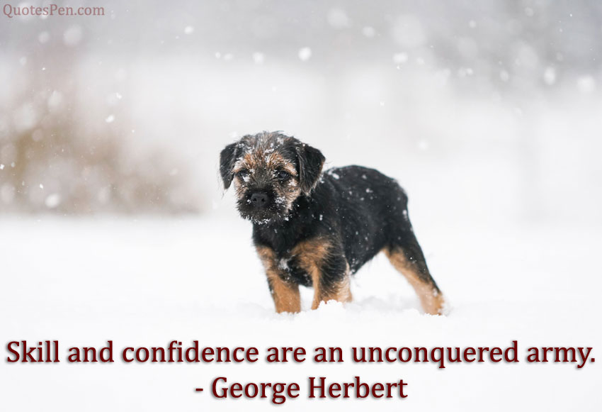 skill-and-confidence-quote