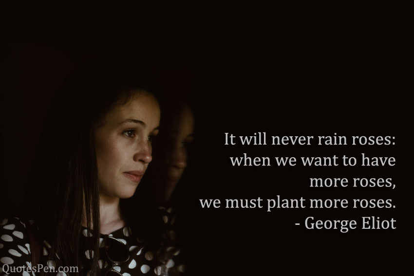 we-must-plant-more-roses