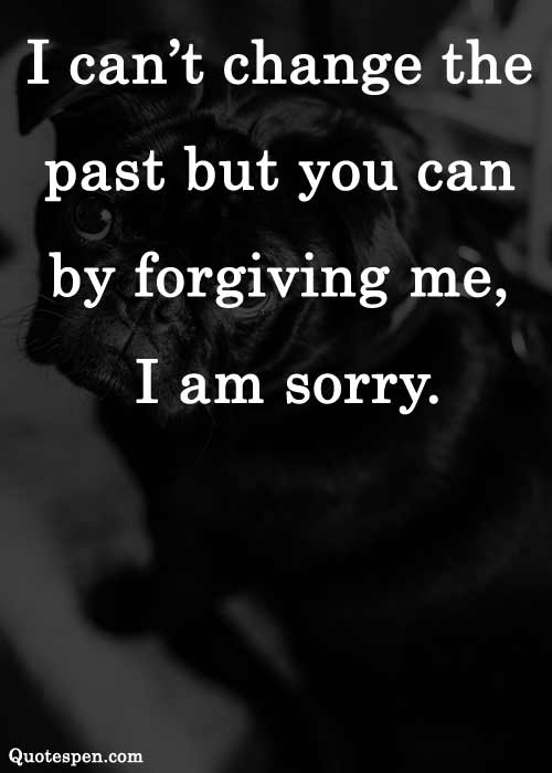 sorry-quotes-on-love