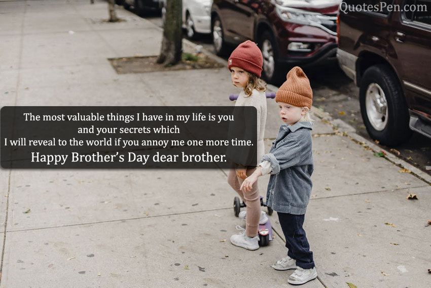 funniest-brothers-day-wishes