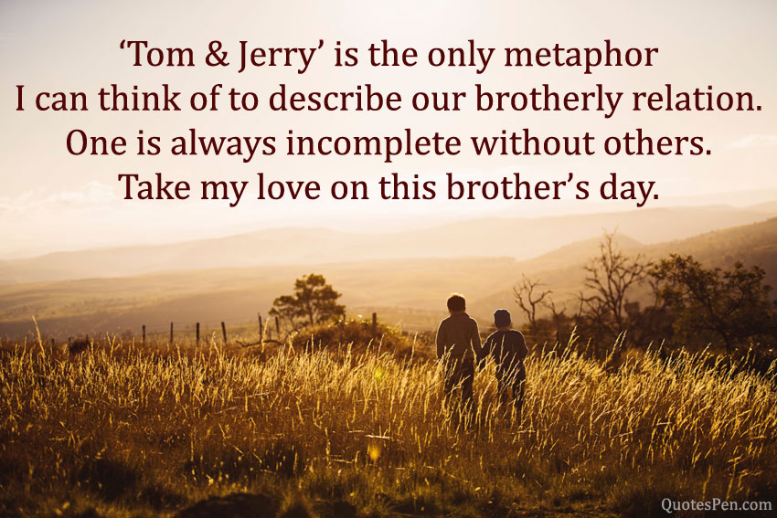 happy-brothers-day-wishes-from-brother