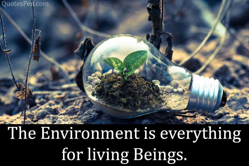 happy-world-environment-day-status