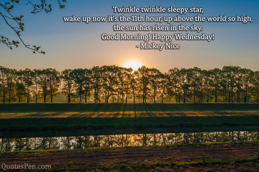 wednesday-good-morning-quotes-funny
