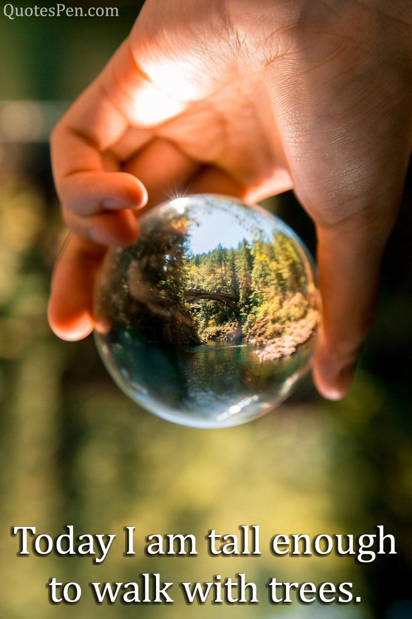 world-environment-day-status-2021