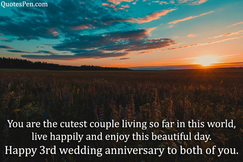 3rd-wedding-anniversary-wishes-for-sister