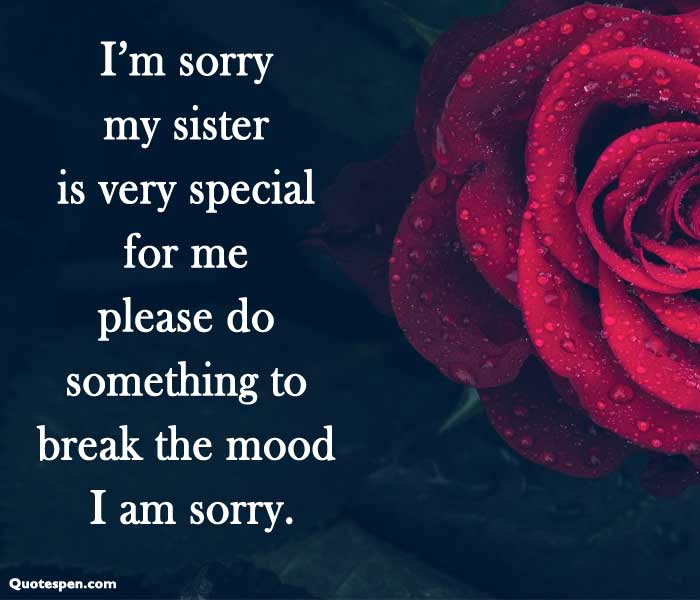 apology-message-to-my-sister