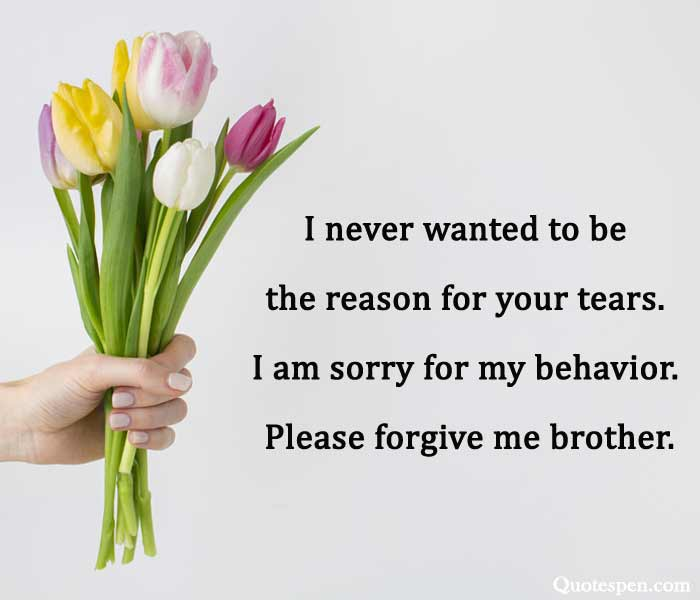 apology quotes for brother