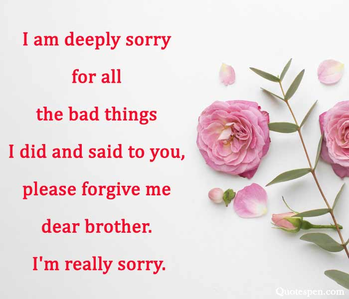 i am sorry brother quotes