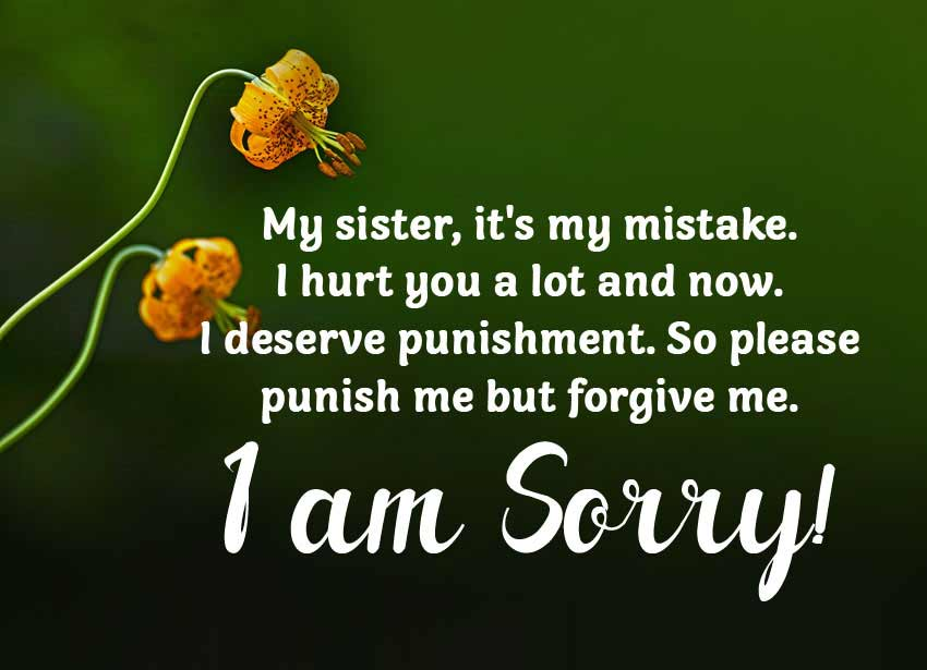 i-am-sorry-quotes-for-sister-from-brother