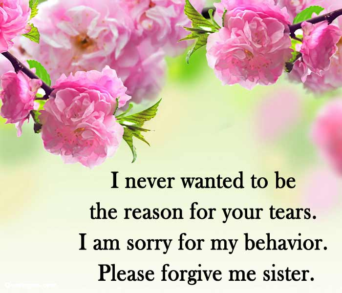 sorry-message-for-sister-from-brother-in-english