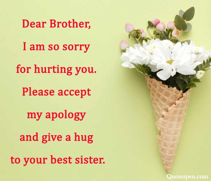 sorry-quote-for-brother-from-sister