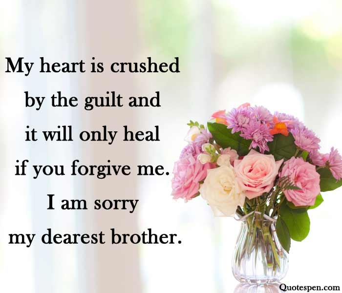 sorry quotes for brother