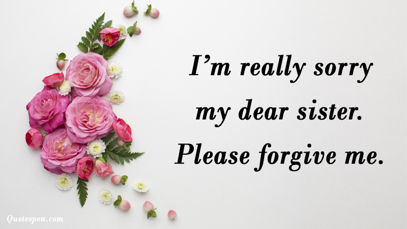 I am really sorry quotes for sister