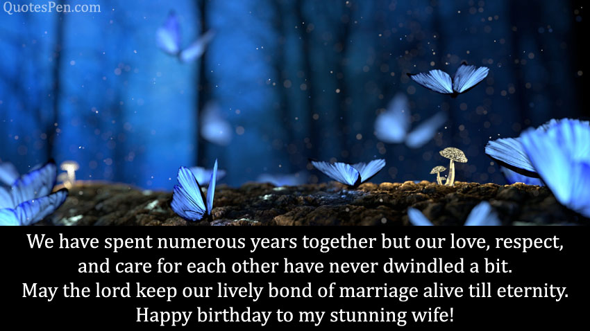 heart-touching-bday-wishes-for-wife