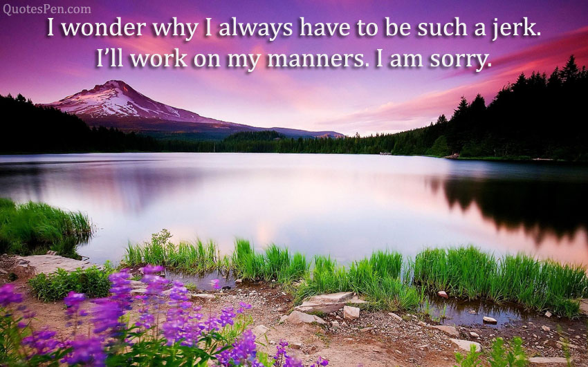 good-morning-sorry-quotes-for-gf
